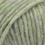 Salvie grønn 18